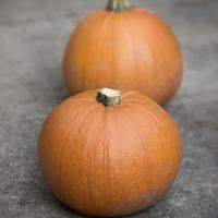 Pumpkin and Mango Curry